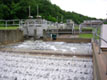 Reliable Industrial Services - Water Treatment Plants